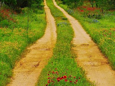 Wildflowers Photograph - Hill Country Backroad by Dennis Nelson