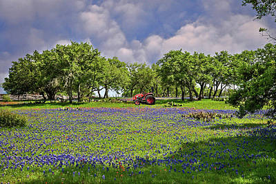 Photograph - Hill Country Farming by Lynn Bauer
