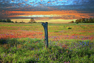 Hill Country Heaven Art Print
