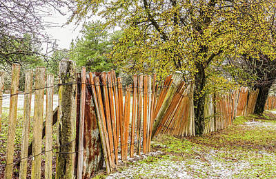 Photograph - Hill End Fence In Winter by Lexa Harpell