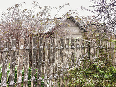 Photograph - Hill End In Winter by Lexa Harpell
