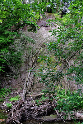 Photograph - Hill Slide by William Norton