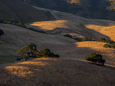 Photograph - Hill Top Ranch by Derek Dean