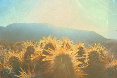 Photograph - Hill Top Sunset  by Mark Ross