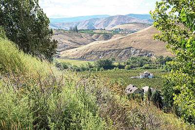 Photograph - Hills Above The Wenatchee River by Tom Cochran