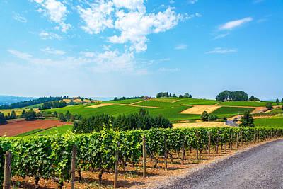 Pinot Noir Photograph - Hills Of Vineyards by Jess Kraft