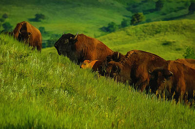 Digital Art - Hillside Buffalo by Ernie Echols