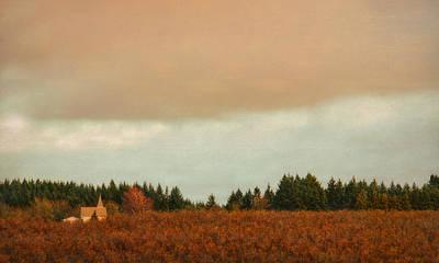 Photograph - Hillside Church by Don Schwartz