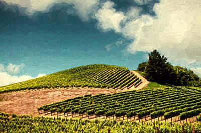 Grapevine Photograph - Hillside Curves by John K Woodruff