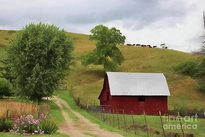 Photograph - Hillside Farm by Benanne Stiens