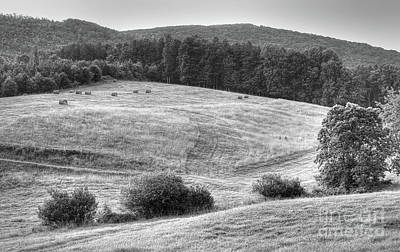 Hillside Hay Art Print by Pete Hellmann