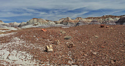 Photograph - Hillside Hues by Gary Kaylor