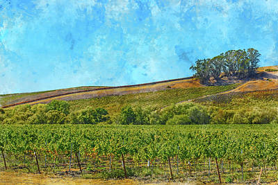 Photograph - Hillside In Napa Valley California by Brandon Bourdages