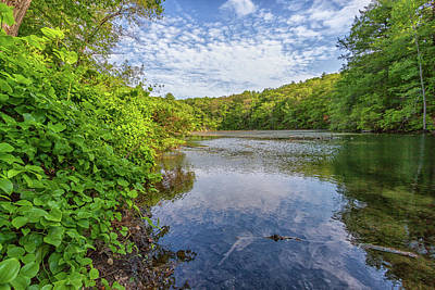 Photograph - Hillside Pond Milton Massachusetts by Brian MacLean
