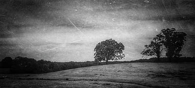 Photograph - Hillside Tree 5 Bw by E Karl Braun