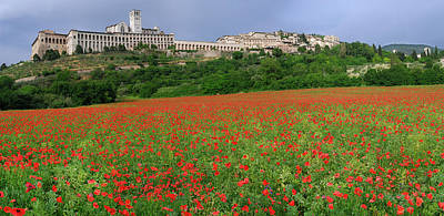 Basilica Di San Francesco Photograph - Hilltop City Of Assisi With Wildflower Poppies In Umbria Italy by Reimar Gaertner