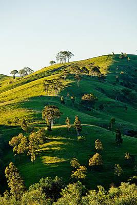 Green Shades Photograph - Hilltop Shadows by Az Jackson