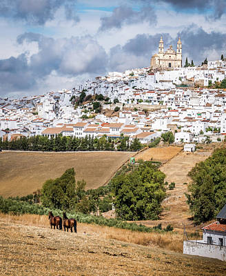 Photograph - Hilltop Village Of Olvera by Michael Thomas