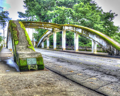 Photograph - Hilo Bridge by Joe  Palermo