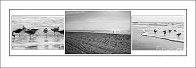 Photograph - Hilton Head Seashore by Angela Rath