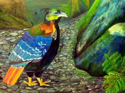 Himalayan Monal Pheasant Art Print by Jennie Robin