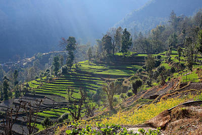 Photograph - Himalayan Stepped Fields - Nepal by Aidan Moran