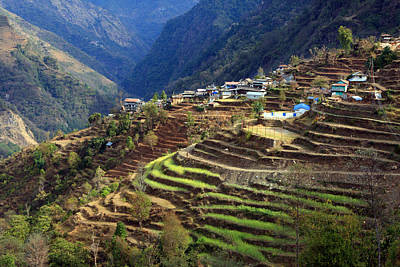 Photograph - Himalayan Terraced Fields by Aidan Moran