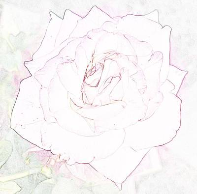 Photograph - Hint Of Peace Rose by Amy Jo Garner