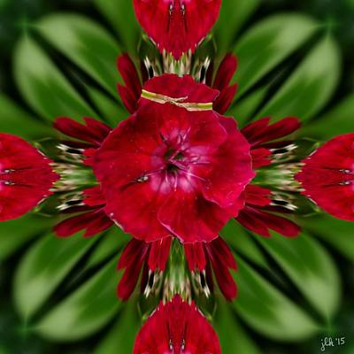 Digital Art - Hippy Rose by Lori Kingston