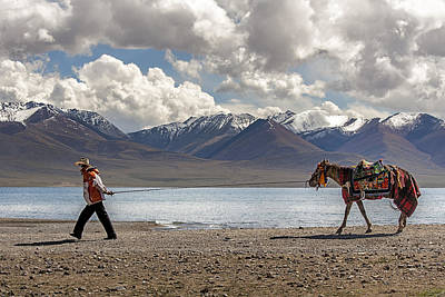 Photograph - His Horse, Tibet, 2007  by Hitendra SINKAR