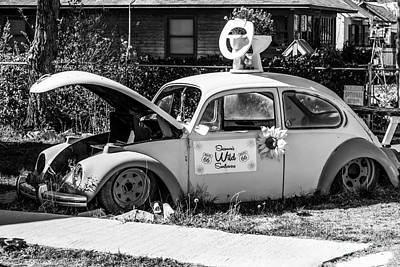 Photograph - Historic Beetle by Anthony Sacco