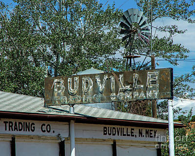 Photograph - Historic Budville by Steve Whalen