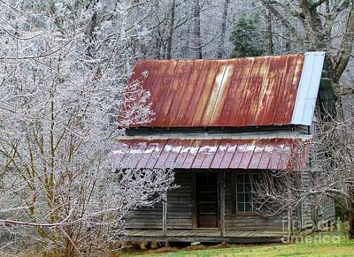 Photograph - Historic North Carolina Cabin by Rosanne Licciardi