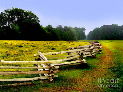 Photograph - Historic Path Natchez Trace Parkway by T Lowry Wilson