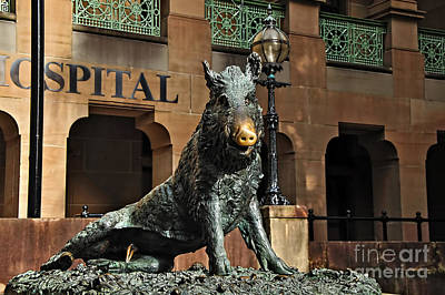 Photograph - Historic Sydney Hospital - Florentine Boar by Kaye Menner