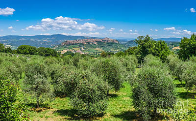 Photograph - Historic Town Of Orvieto by JR Photography
