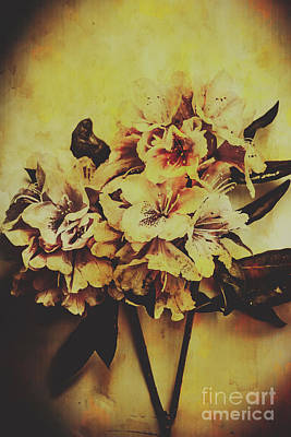 Damaged Photograph - History In Bloom by Jorgo Photography - Wall Art Gallery