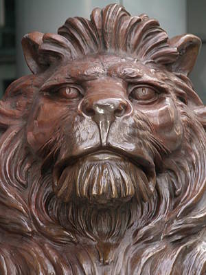 Photograph - Hksb Lion by Michael Canning