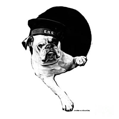 Hms Bulldog Art Print by Edward Fielding