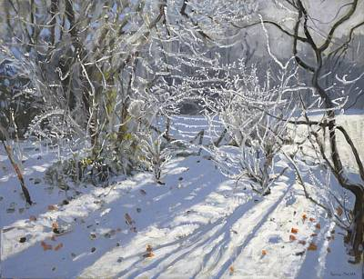 Winter Light Painting - Hoar Frost by Andrew Macara