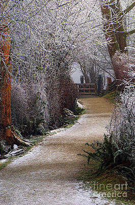Hoar Frost On The Kanaka Creek Riverfront Trail Print by Sharon Talson