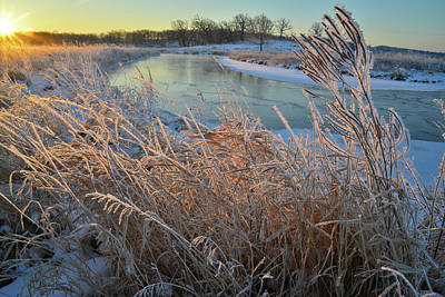 Photograph - Hoarfrost Along Nippersink Creek In Glacial Park by Ray Mathis