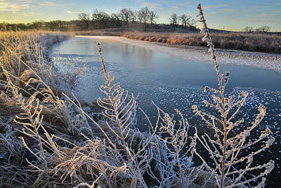 Photograph - Hoarfrost Along Nippersink Creek On A Subzero Morning In Glacial Park by Ray Mathis