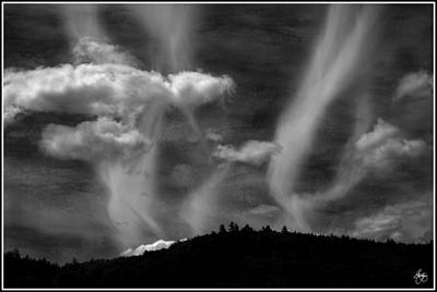 Photograph - Hobart Hill Monochrome by Wayne King