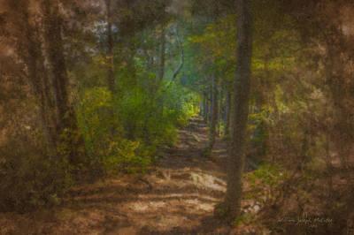 Hobbit Path Art Print