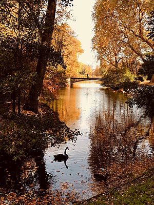 Photograph - Hofgarten, Duesseldorf by Richard Cummings
