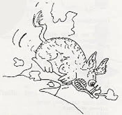 Drawing - Hog Fury by Julia Woodman