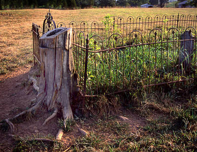 Photograph - Hogeye Grave Site by Curtis J Neeley Jr
