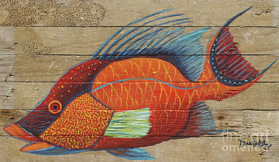 Hogfish Art Print by Danielle Perry