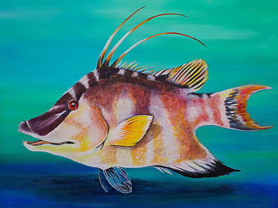 Painting - Hogfish by Jacqueline Endlich